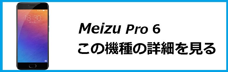 pro6_1