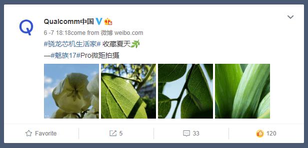 Qualcomm ChinaがMeizu 17 Proのマクロカメラで撮影した画像を公開